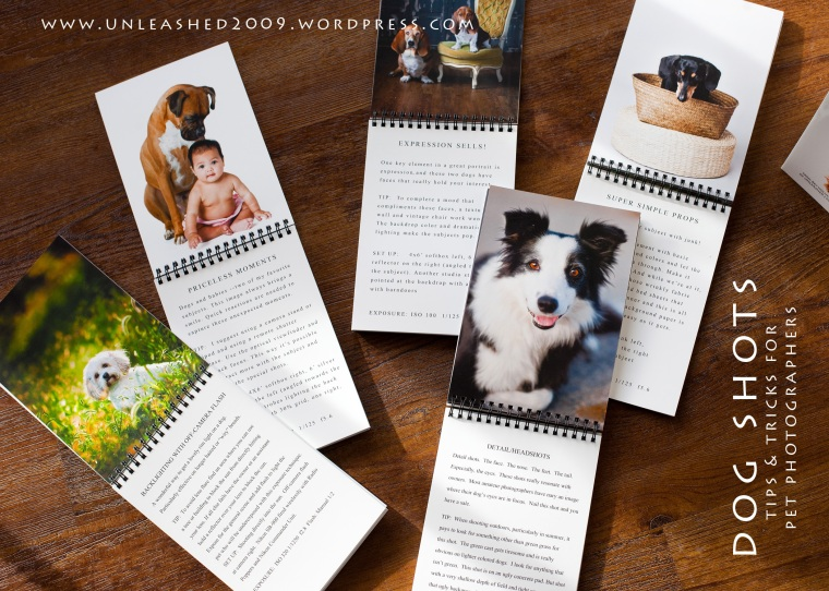 Unleashed pet photography book Dog Shots
